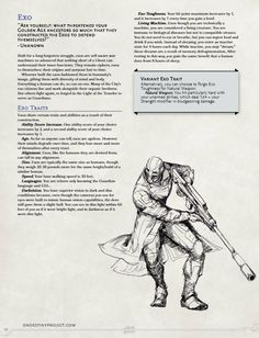 Dungeons And Dragons Board, Dungeons And Dragons Homebrew, Dnd Characters, Fantasy Characters, Fantasy Character Design, Character Art, 5e Races, Destiny Video Game, Dnd Stats