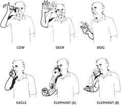 sign Language test - Google Search