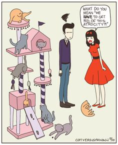 I love these CAT VS HUMAN cartoons!  My Boyfriend and I have sooo had this conversation!