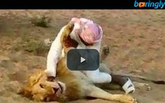 Arabic man challenges a #lion. Who do you vote for the win?   #funnyfight #funnyvideos