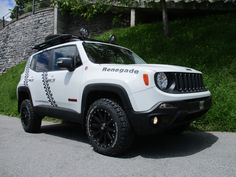 Jeep Renegade Casty Off-Road