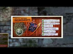 Pure Green Coffee Bean Reviews - YouTube