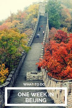 One week in Beijing! What to do in Beijing, China.  #travel #beijing #china