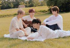 Dino Seventeen, Joshua Seventeen, Seventeen Album, Woozi, Jeonghan, Wonwoo, Seventeen Instagram, Pop Photos, Pledis 17