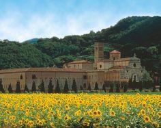 Storia, fede e cultura a due passi da #ilCastellone: l'Abbazia di Praglia. #ColliEuganei #Padova