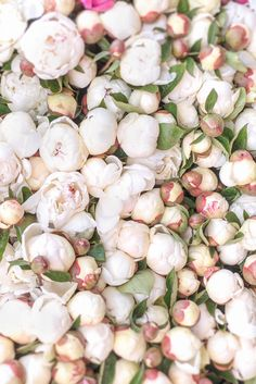 Paris Photograph -  White Peonies at Market, Paris Travel Print, French Home Decor, Large Wall Art