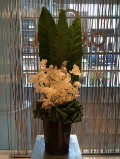 OMEGA N.G.H.C   #flower #shop #works #matilda #中目黒 Matilda, Omega, It Works, Flowers, Shop, Plants, Plant, Royal Icing Flowers, Nailed It