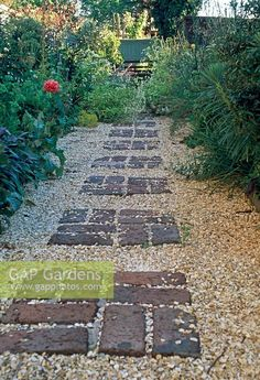 Gravel garden path with pattern of bricks … - Bepflanzung Gravel Patio, Gravel Garden, Garden Pests, Gravel Pathway, Sunken Garden, Herb Garden, Vegetable Garden, Brick Path, Brick Garden