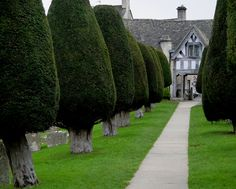 Painswick Churchyard by jacquemart