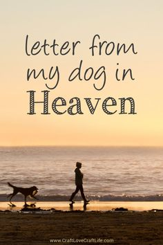 Letter from Heaven (Dog)