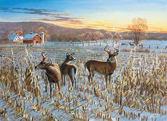 Terry Redlin Wildlife Prints | fields continue to provide good foraging for a variety of wildlife ...