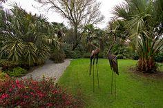 Bronze flamingos grace a lush lawn at Lamorran House Gardens in Cornwall, England
