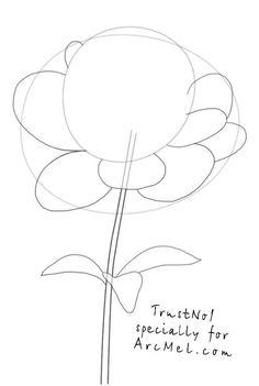 Pfingstrose zeichnen  Blumen Zeichnungdekokingcom4
