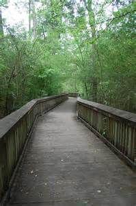 Tickfaw State Park Nature Center in Louisiana