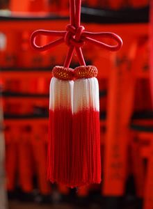 Detail of tassle in Kyoto. #PhotojournalismJapan