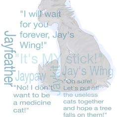 Jayfeather quote edit by that.warrior.cats.blog on Instagram