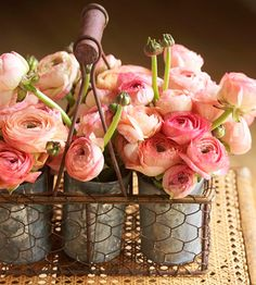love the look of this, old cans without their labels, in wire baskets...totally showcases the flowers! I think this would also work great with zinnias (like colors or a wild mixture)