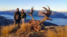 Il était également parti en Nouvelle-Zélande pour chasser le Tahr et le chamois comme en atteste ce témoignage publié sur le site de l'entreprise organisatrice des safaris auxquels le quintuple vainqueur de la Coupe du monde de ski a participé. « Luc Alphand […] a réalisé son objectif : le tir d'un Tahr, et d'un chamois en Nouvelle-Zélande », peut-on lire.
