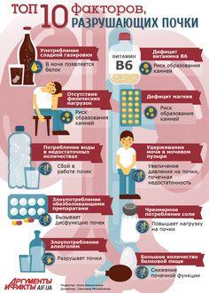 Топ-10 факторов, разрушающих почки | Здоровая жизнь | Здоровье | АиФ Украина