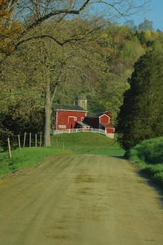 Country dirt road to a lovely scene