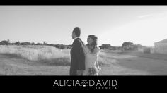 Highlights: Alicia & David