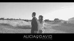 Highlights: Alicia & David