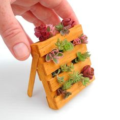 CUTE Miniature Palette Planter Made in the USA Includes by Janit