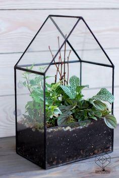 Big Glass House Planter / Handmade Glass Succulent Terrarium / Glass Display Box / Stained Glass Geometric Pot