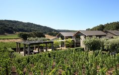 Another one of our favorite projects in Napa Valley. Winery Tasting Room, Property Design, Modern Barn, Barn Wedding Venue, Private Garden, California Homes, Farm Life, Farmhouse Style, Chalets