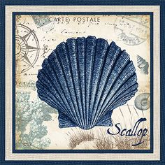 RB6365TS <br> Seaside Indigo Shells III <br> 12x12