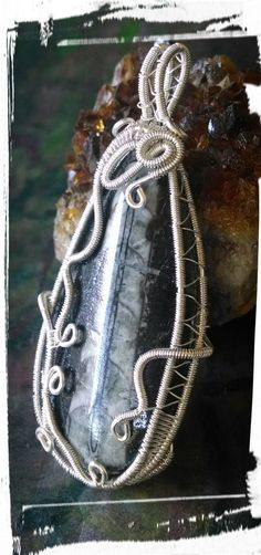 Orthoceras wrapped pendant
