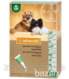 Средства от паразитов собак, блох, клещей, гельминтов от 100 - Товары для животных Киев на Bazar.ua