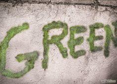 Make Moss Graffiti Step 8revised.jpg