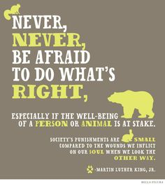 """""""Never, never, be afraid to do what's right, especially if the well-being of a person or animal is at stake. Society's punishments are small compared to the wounds we inflict on our soul when we look the other way."""" -- Martin Luther King, Jr. This inspirational quote features the Overlook design by Bella Figura."""