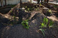 Winding Hugelkultur Beds, hugelkultur, permaculture, permaculture gardening, gardening, raised garden beds, compost, soil, garden, perennial vegetables