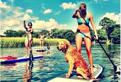 Private Paddle Board Trip for 2, 3 or 4