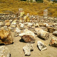 Several pieces of petrified trees, caused by the volcanic eruptions of twenty million years ago; these pieces have mineralized with iron, sulphur, copper and more (Lesvos, Greece)