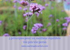 5 principes pour un meilleur équilibre vie pro/vie perso Coaching, Plants, Blog, Exercises, Training, Blogging, Plant, Planets