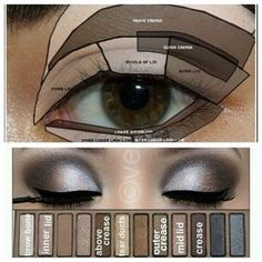 Nice naked palette look and shows you where each color goes on which part of your eye!