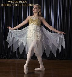Angelic Fairy WINGS ONLY Halloween Christmas Dance Costume Child & Adult Mediums #Cicci