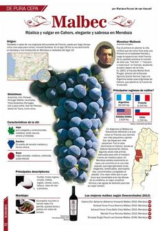 The Different Types of Wine Malbec Wine, Wine Varietals, Wine Folly, Wine Education, Wine Guide, In Vino Veritas, Wine And Beer, Wine And Spirits, Wine Gifts