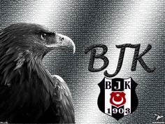 BeşiktAŞK Black Eagle, Eagles, Black And White, Liverpool, Ottoman, Pasta, Football, Instagram, Design