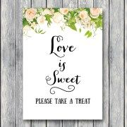 TH01-5×7-sign-love-is-sweet-take-a-treatr-peonies-floral-wedding-bridal-decoration