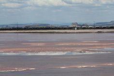 View of L. Magadi