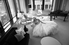 Kate and Jared's Wedding | The New York Palace Hotel » NYC Wedding Photography Blog