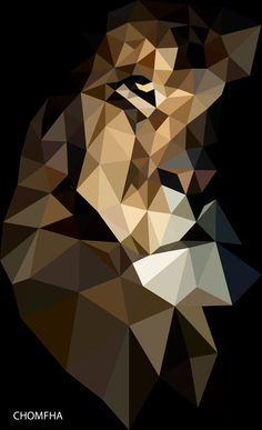 #Lion   #polygon