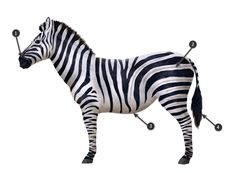 how to draw zebra pattern stripes 3 Easy Giraffe Drawing, Zebra Drawing, How To Drow, Watercolor Paintings Of Animals, Frog Design, Draw Animals, African Animals, Pattern Drawing, Giraffes