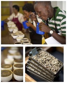 Cupping in Rwanda. ©Copyright Gary S. Chapman 2011 https://www.facebook.com/pages/Coffee-Society/651773478236556