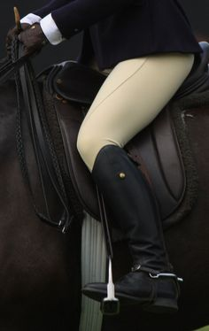 Learn to Properly Ride Horse | A month's worth of equestrian lessons in non-competative English Pleasure riding should be enough to accomplish this. I have always loved horses and have wanted to ride in the past but didn't because I was inexperienced and intimidated. I want to change that.