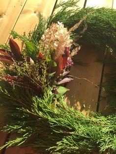 Usva About Me Blog, Herbs, Plants, Herb, Flora, Planters
